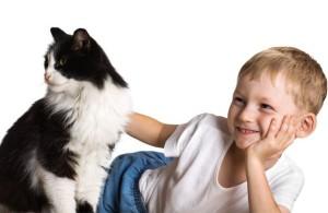 cat_child_boy