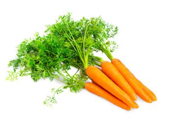 cenoura