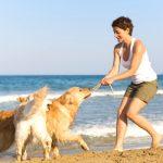 Sabe qual é a segunda praia de Portugal que permite a circulação de cães?