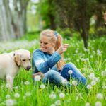 A verdadeira importância dos passeios para os cães!