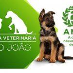 Clinica Veterinária São João – 25 Anos!