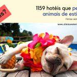 1159 hotéis que permitem animais de estimação!